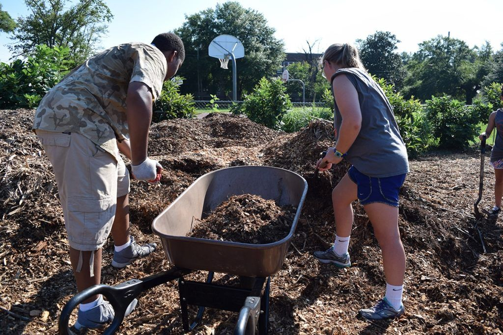 Individuals participate in service projects