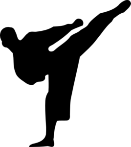 kickboxing figure