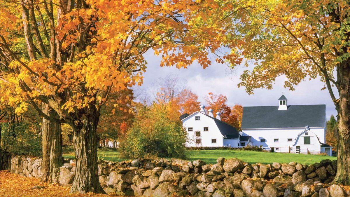 Rural Philanthropic Analysis | Research | Campbell University