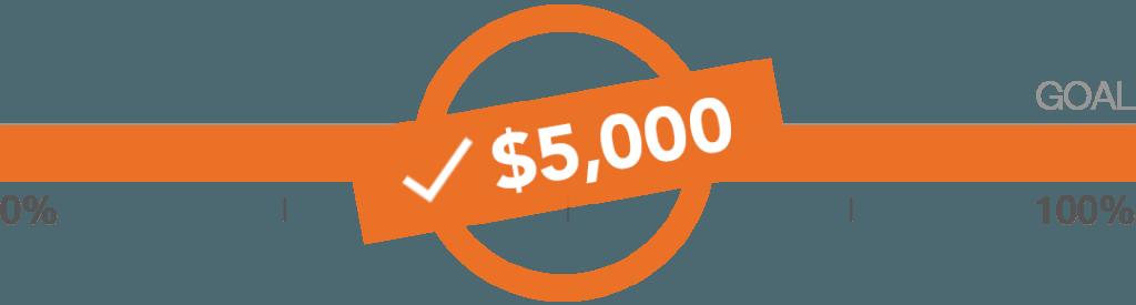 wear orange challenge meets 100% of goal
