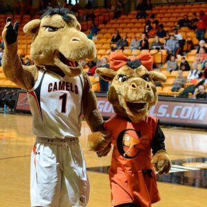 Gladys and Gaylord, two camel mascots, hold hands on the basketball court.