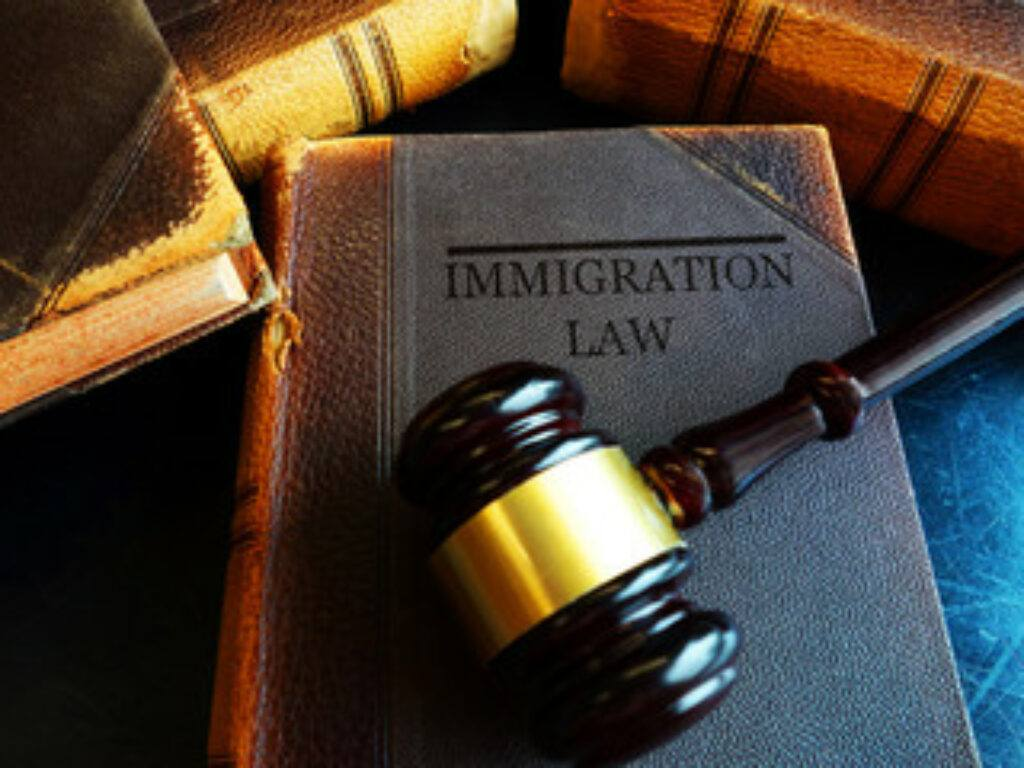 Photo of a gavel lying on a book that says Immigration Law on the cover