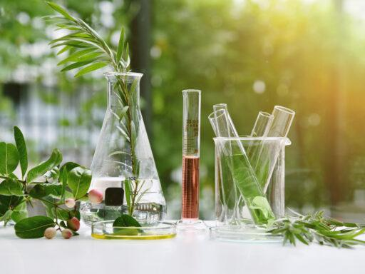 beakers with plants and essential oils