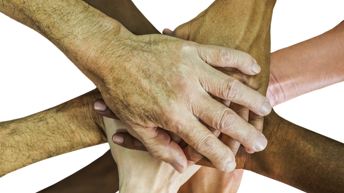 image of many hands