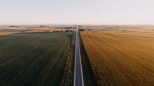 Road between two fields