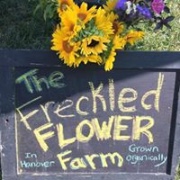 Freckled Flower Farm sign